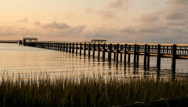 Fishing The Chesapeake Bay The World's Largest Estuary